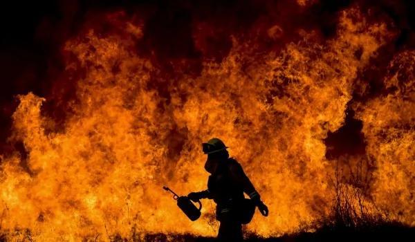 加州野火肇因 竟是因为这个…