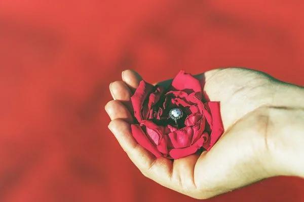 古诗词里的爱情:是爱而不得 还是情深不寿?