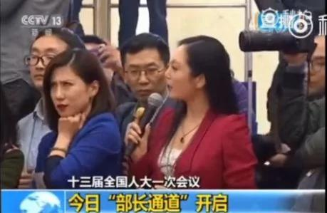 """女记者翻白眼 多家外媒被曝""""地下党"""" 更有贼喊捉贼者"""
