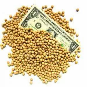 为何中共不敢以大豆升级贸易战?开打可能性不大?