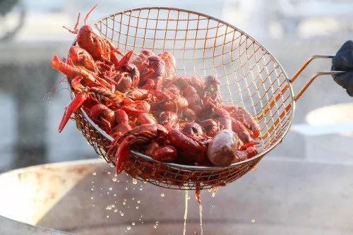小龍蝦與哈夫病有關?到底能不能吃?專家如此說!